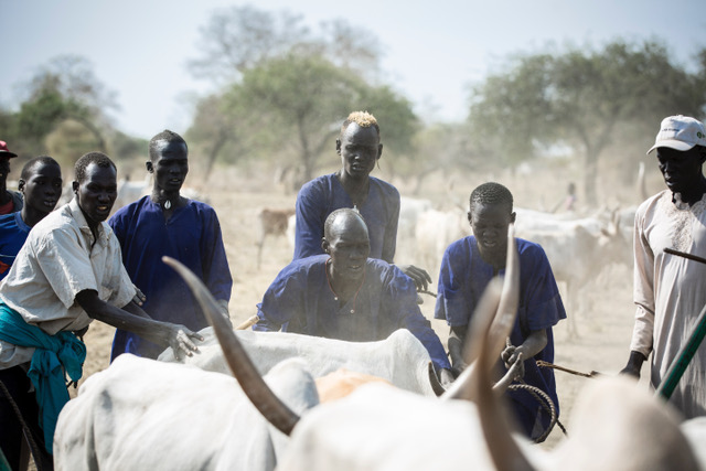 Inter-communal clashes over cattle and land are endemic in South Sudan
